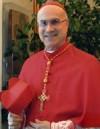 """leggi l'articolo 'Discorso del Card. Tarcisio Bertone, Segretario di Stato vaticano, al Senato italiano sulla """"Caritas in veritate""""'"""
